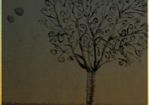 meinbaum19